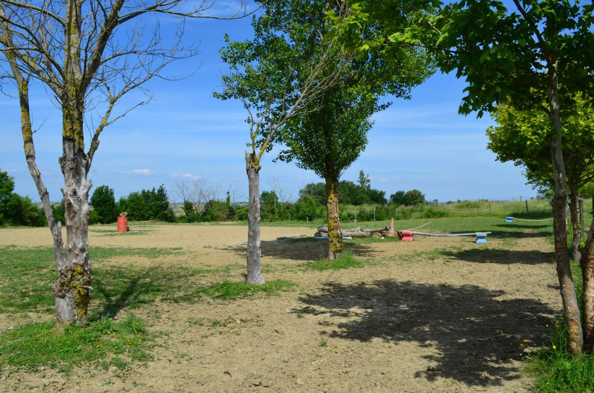 Site rencontre équitation