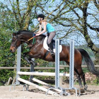 cours d'équitation Mons